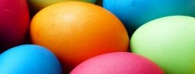 egg-100165__340